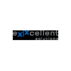 eXXcellent solutions